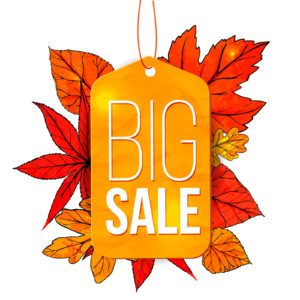 Big sale banner with autumn leaves